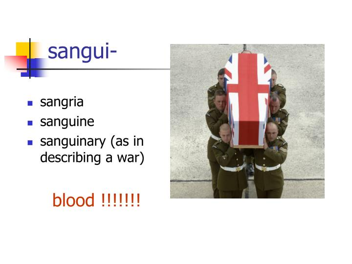 sangui-