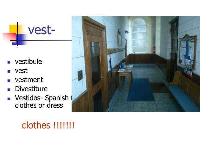 vest-