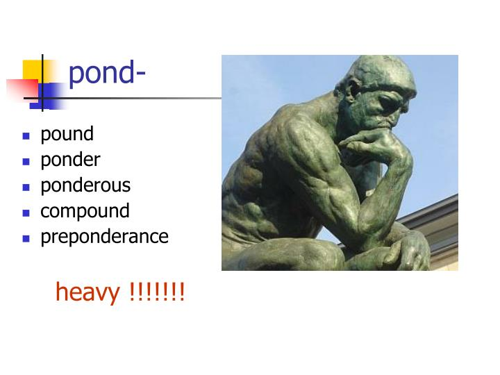 pond-