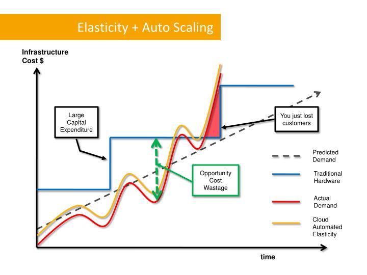 Elasticity + Auto Scaling