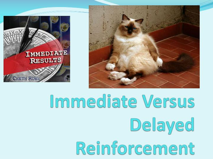 Immediate Versus Delayed Reinforcement
