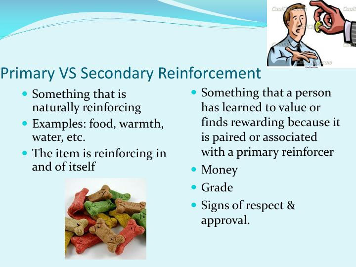 Primary VS Secondary Reinforcement