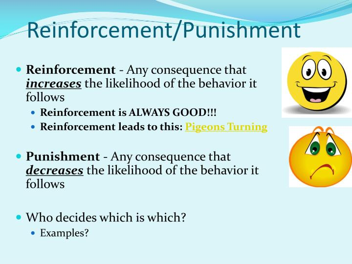 Reinforcement/Punishment