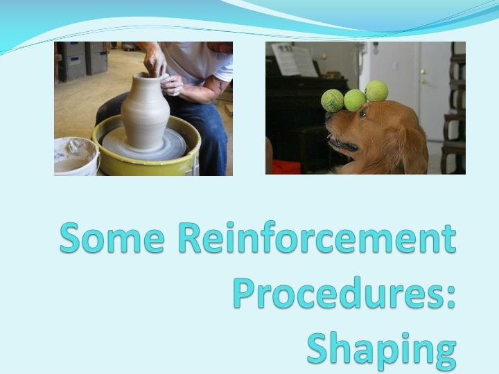 Some Reinforcement Procedures: