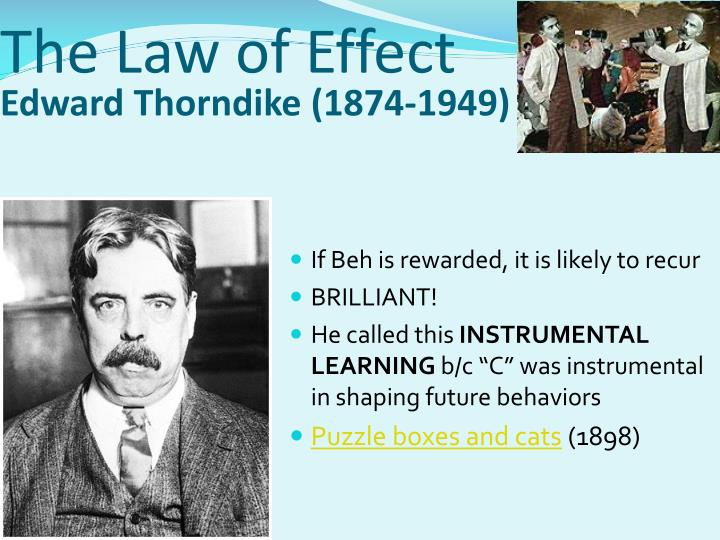 The Law of Effect