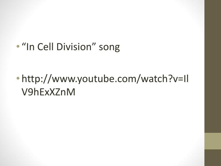 """In Cell Division"" song"