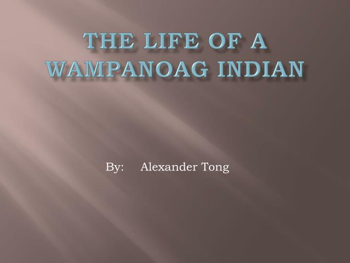 The life of a wampanoag indian