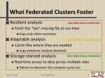 what federated clusters foster