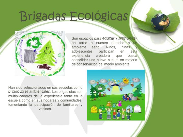 Brigadas Ecológicas