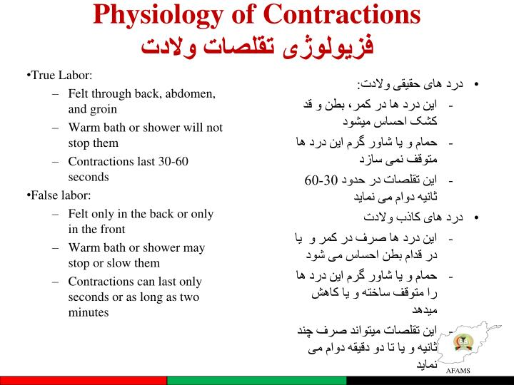 Physiology of Contractions