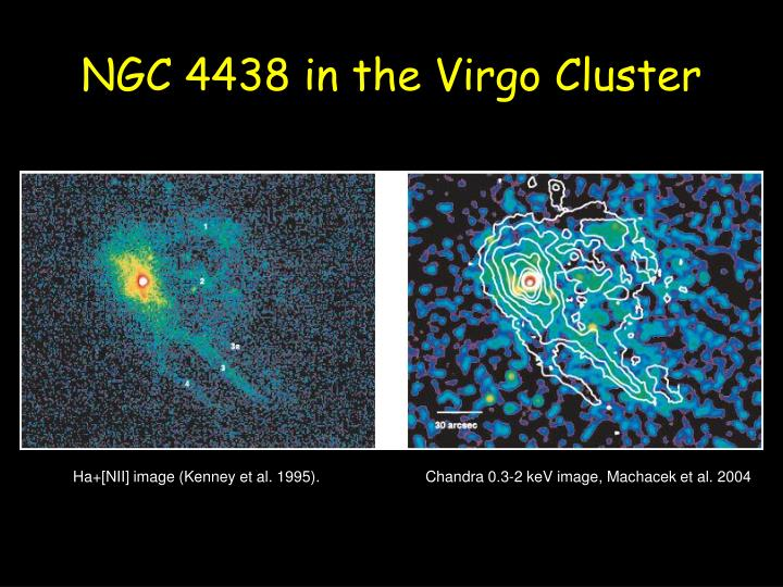 NGC 4438 in the Virgo Cluster
