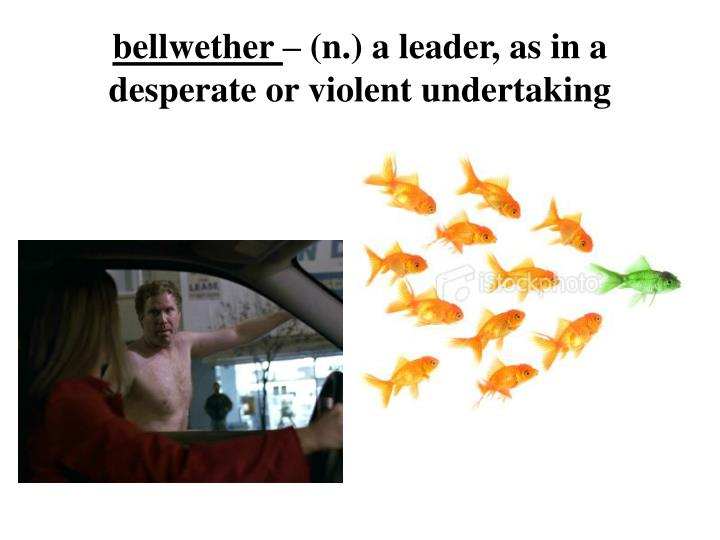B ellwether n a leader as in a desperate or violent undertaking