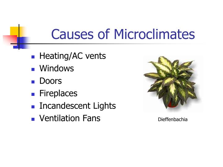 Causes of Microclimates