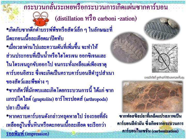 กระบวนกลั่นระเหยหรือกระบวนการเกิดแผ่นซากคาร์บอน (