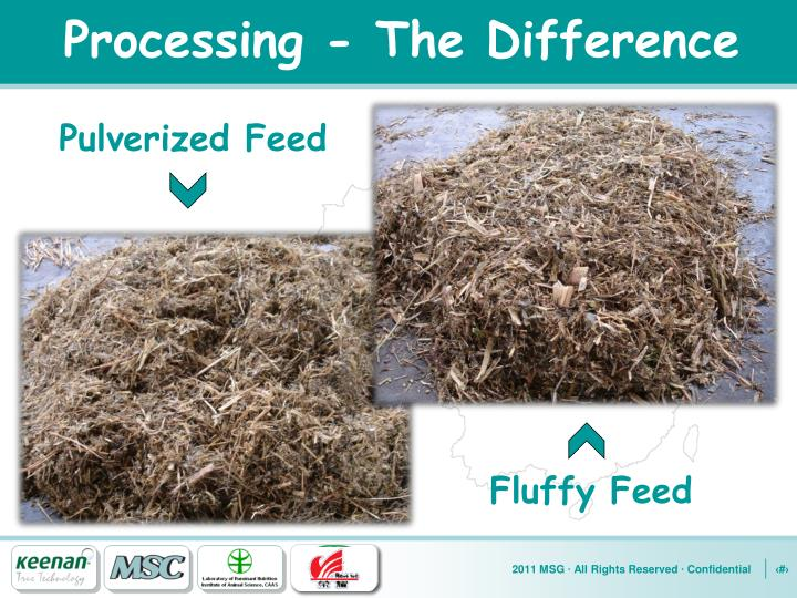 Processing - The Difference