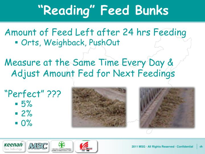 """Reading"" Feed Bunks"