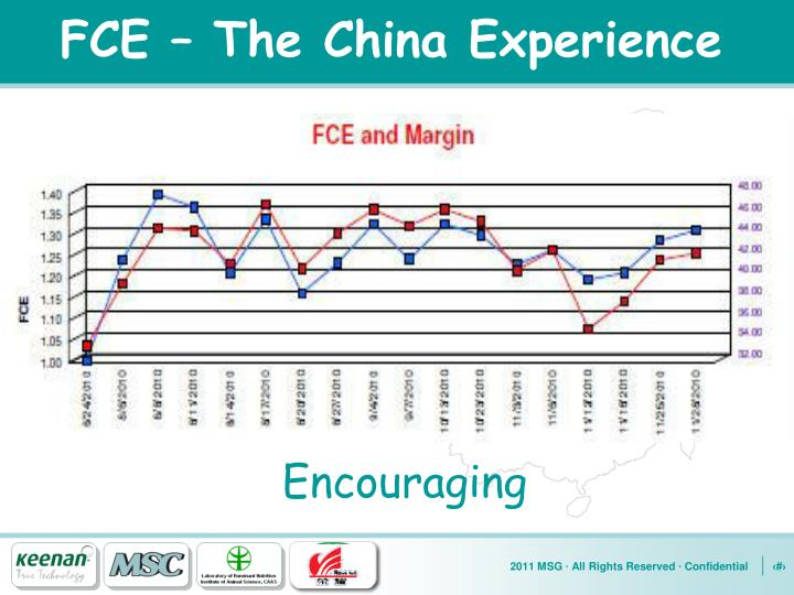 FCE – The China Experience