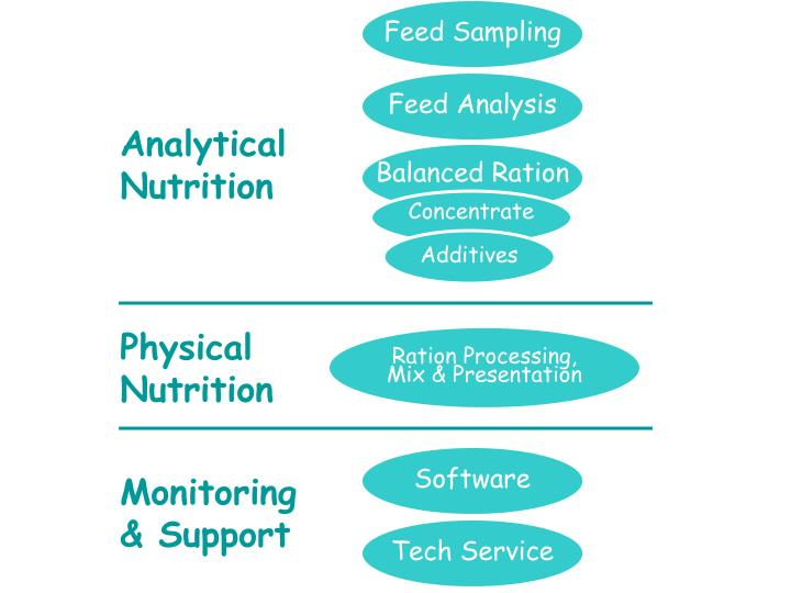 Feed Analysis