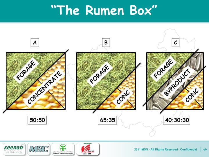 """""""The Rumen Box"""""""