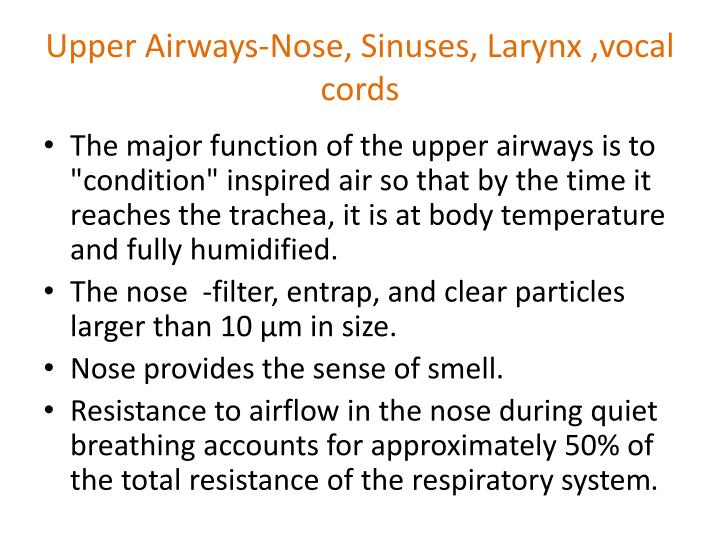 Upper Airways-Nose, Sinuses, Larynx ,vocal cords