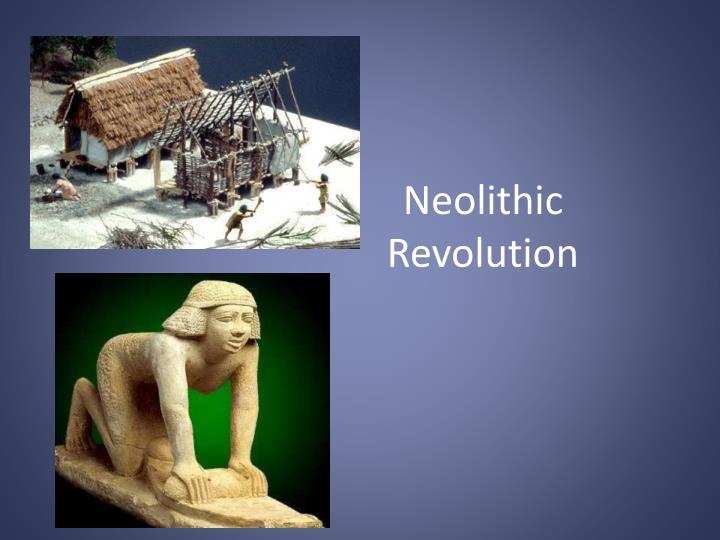 The Neolithic Revolution Essay
