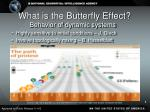 what is the butterfly effect