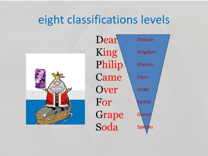 Eight classifications levels