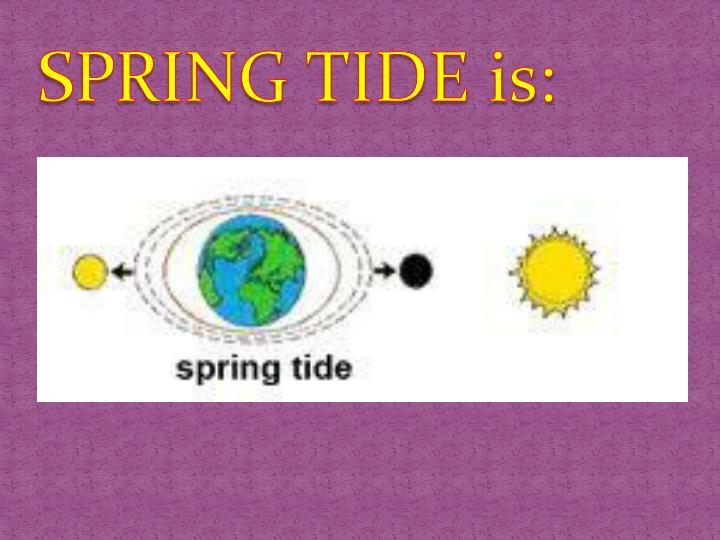 SPRING TIDE is: