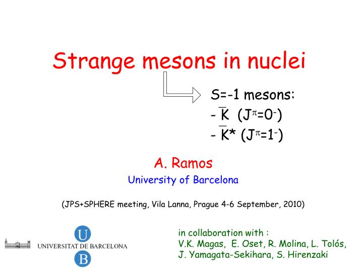 Strange mesons in nuclei