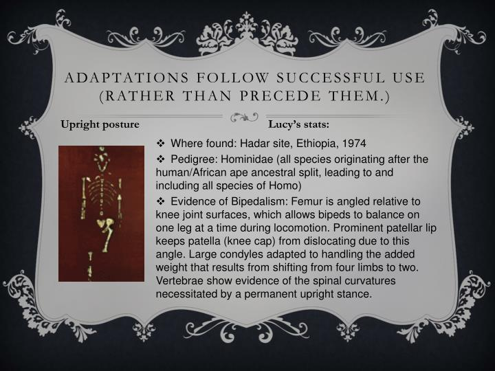 Adaptations follow successful use (rather than precede them.)