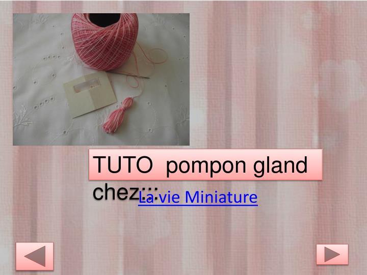 TUTO  pompon gland chez:::