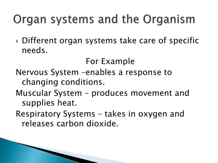 Organ systems and the Organism