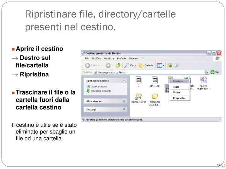 Ripristinare file, directory/cartelle presenti nel cestino.