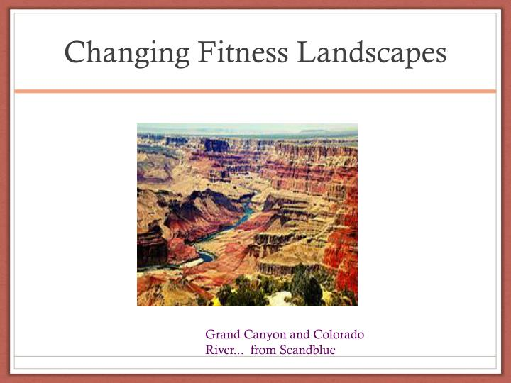 Changing Fitness Landscapes