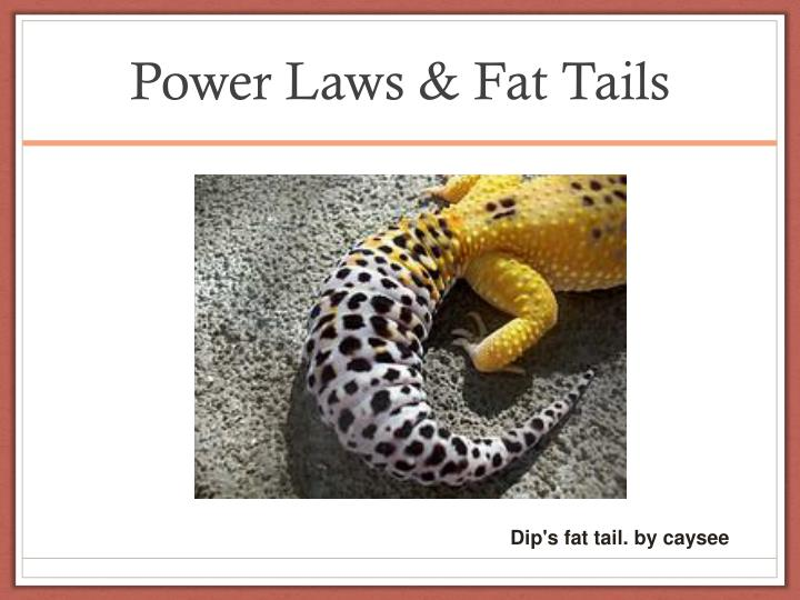Power Laws & Fat Tails