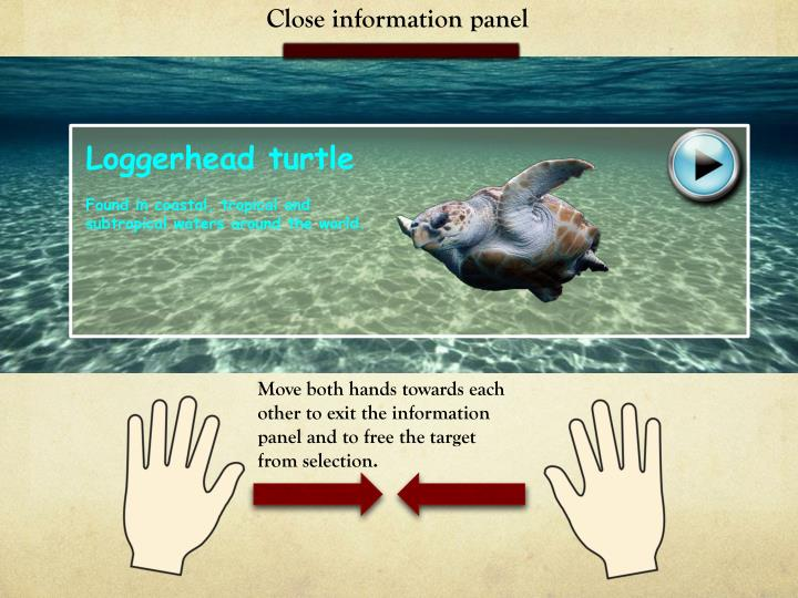 Close information panel