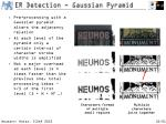 er detection gaussian pyramid