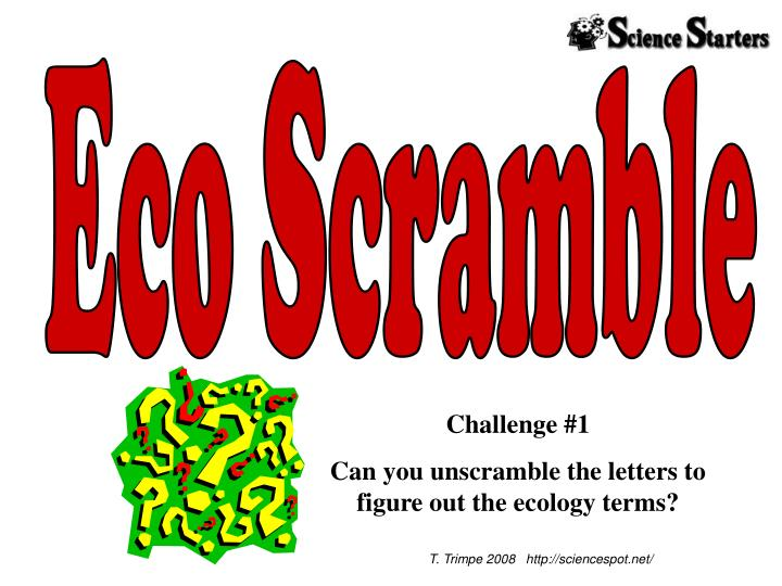 Eco Scramble
