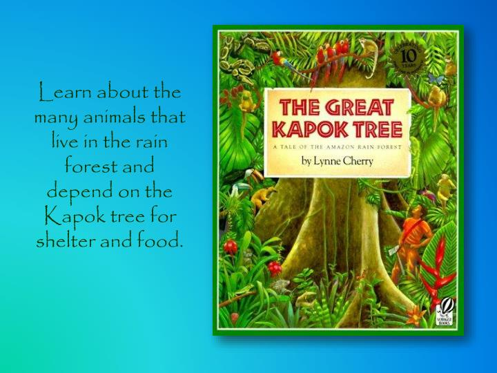 Learn about the many animals that live in the rain forest and depend on the Kapok tree for shelter and food.