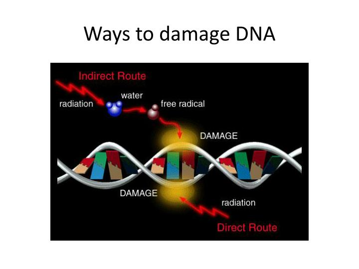 Ways to damage DNA