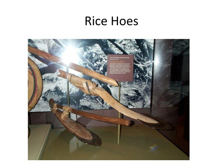 Rice Hoes
