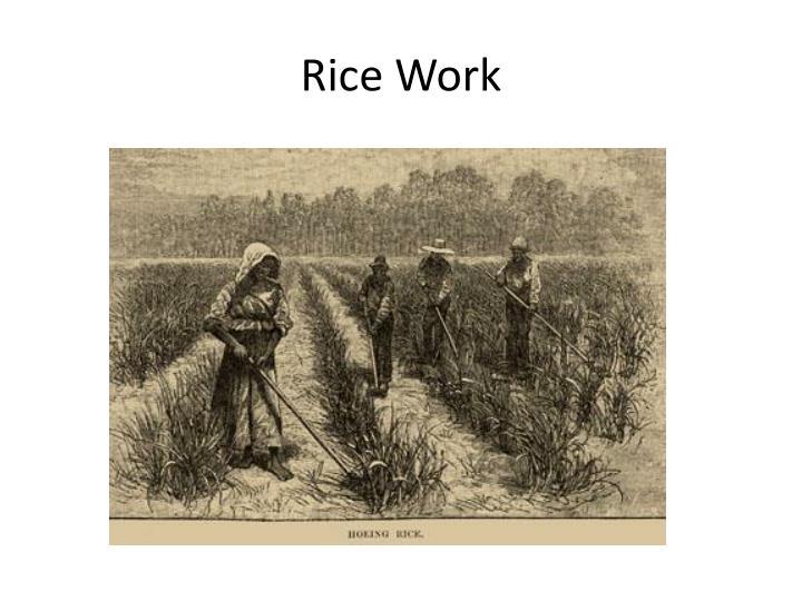 Rice Work