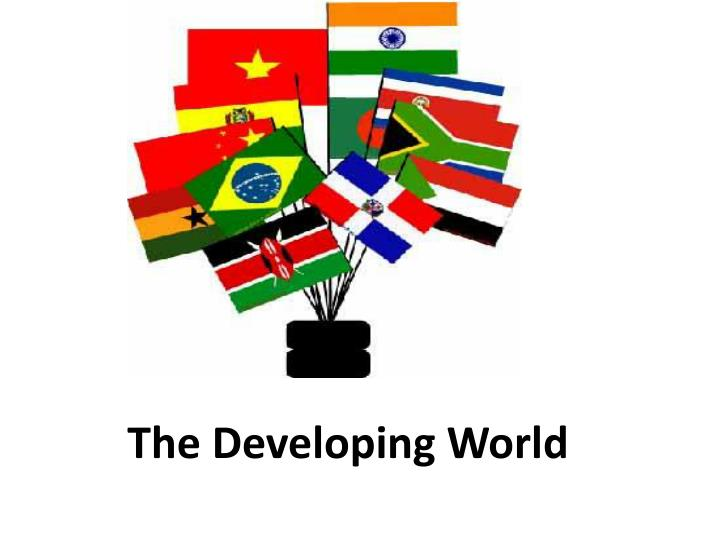 poverty in the developing world essays