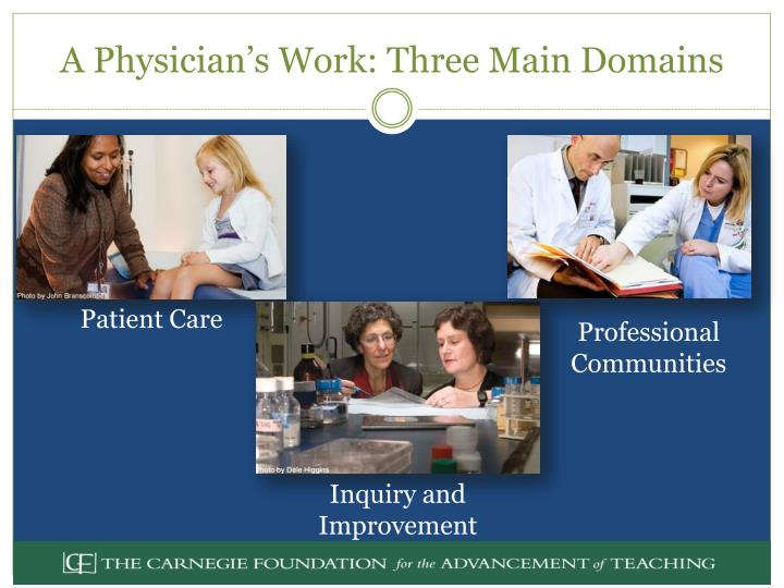 A Physician's Work: Three Main Domains