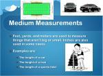 medium measurements
