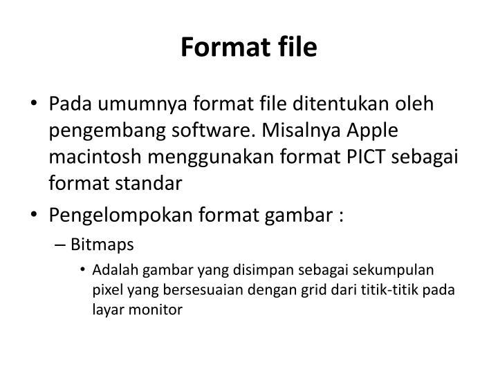Format file