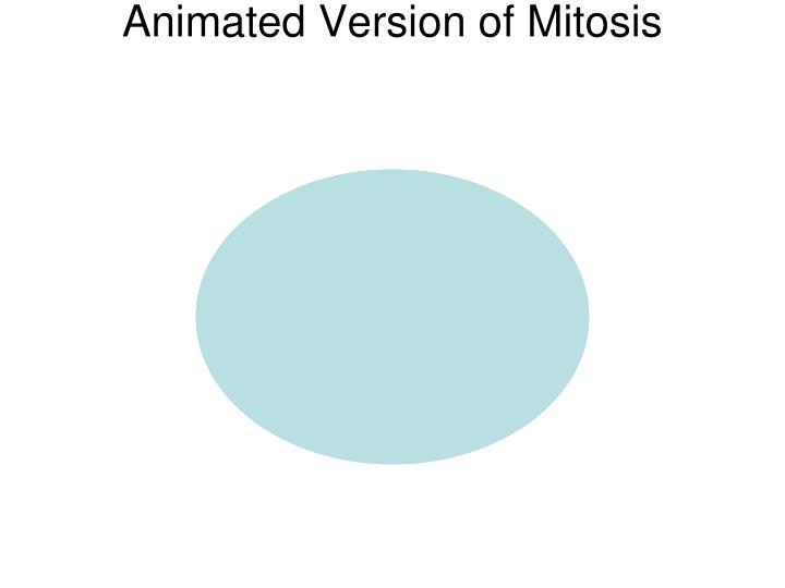 Animated Version of Mitosis