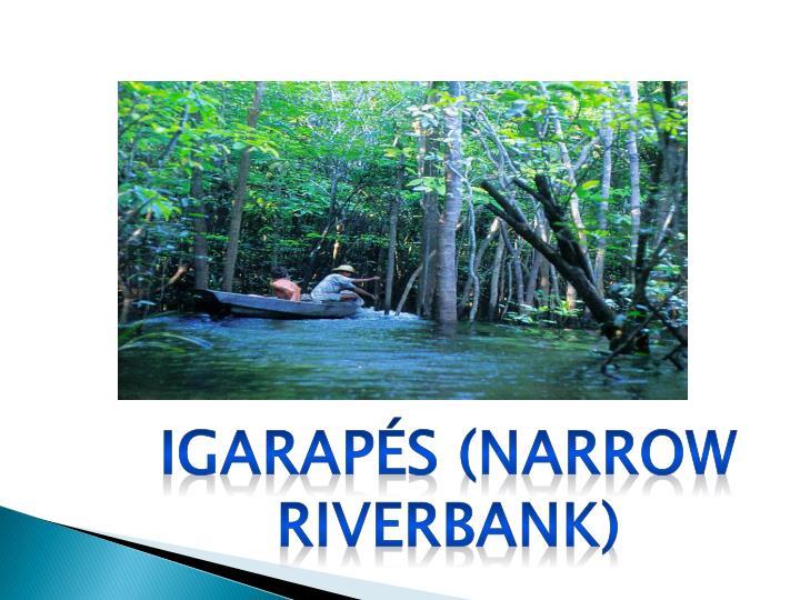 Igarapés