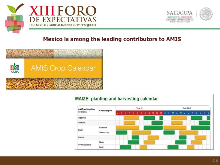 Mexico is among the leading contributors to AMIS