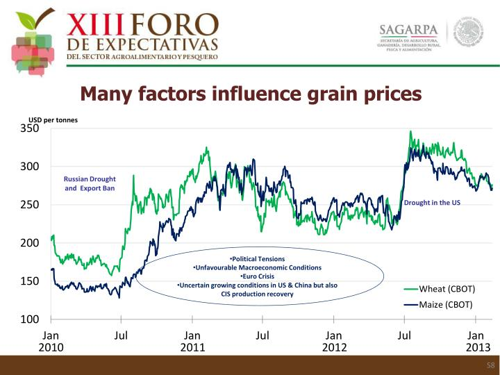Many factors influence grain prices